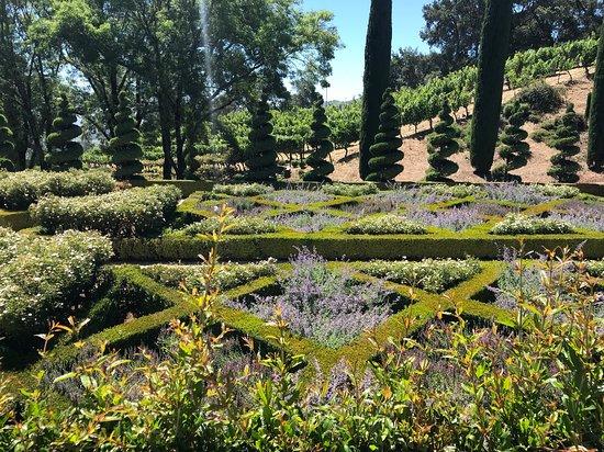 Newton Vineyard: The beautiful and well-manicured gardens