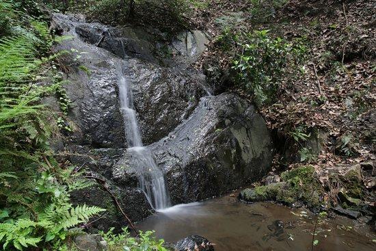 Narutaki Falls
