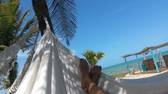 Pousada Paradise: Em nosso redário... Momentos de conexão...