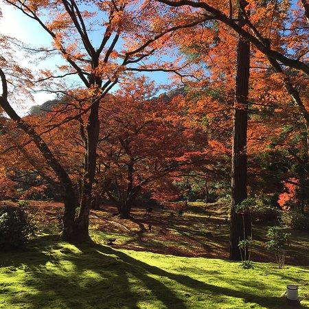 Bilde fra Hogonin Temple