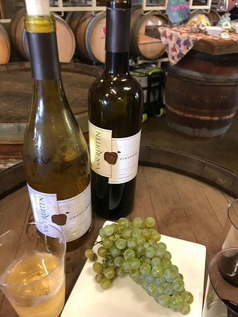 Lodi, Kalifornien: Van Ruiten Winery - the grapes and the wine!