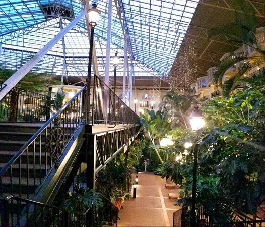 Фотография Gaylord Opryland Resort & Convention Center