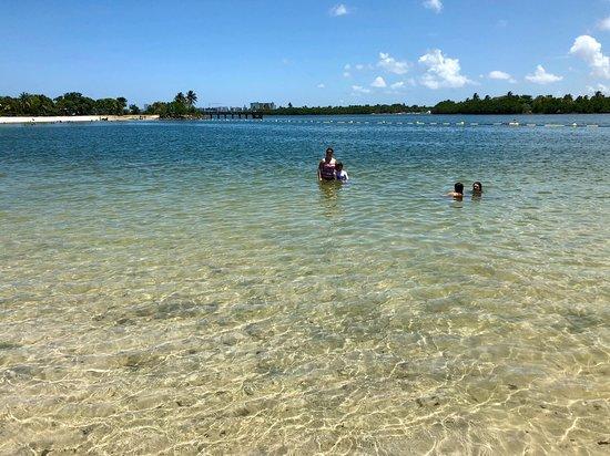North Miami Beach, FL: photo2.jpg