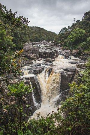 Fianarantsoa Province, Madagascar: Ranomafana