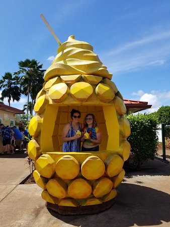 Dole Plantation: adorable pineapple stand