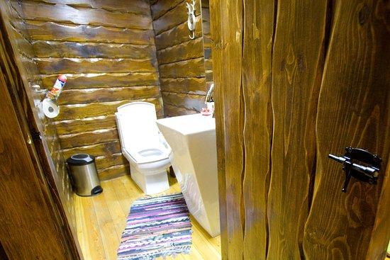 Гостевой дом Черепановых: Туалет. По стенам бегают муравьи. Вытяжки нет.