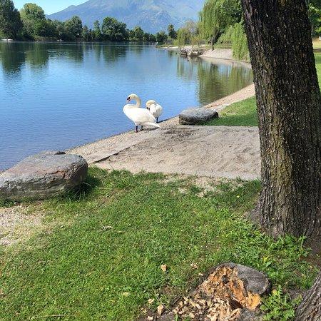 Bilde fra Camping La Riva