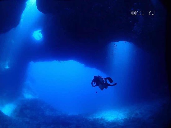 Palau 7th Wonder Dive and Tours: Blue hole is one of the famous Diving site in Palau . Book Now!   Email : palau7w@gmail.com