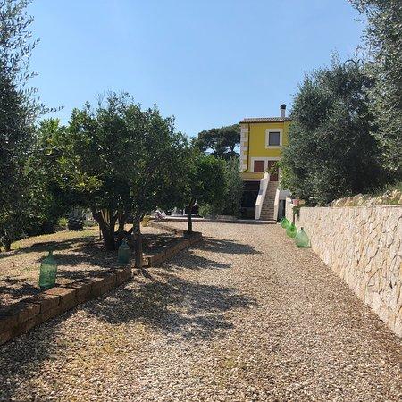 Bilde fra B&B Borgo del Nespolo