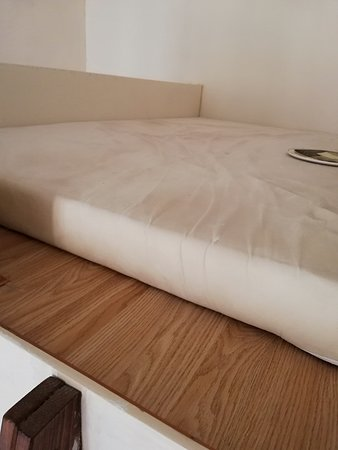 Sinagogue Premium Central Residence: the lamp had fallen on the bed with dead bugs