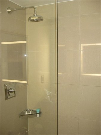 Hyatt Regency Crystal City at Reagan National Airport: Walk-in shower without tub