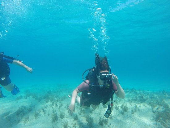 Discover scuba diving: 2 dives @ nissi beach and @ green bay. 1st time for me and my 8 year old daughter. Amazing!