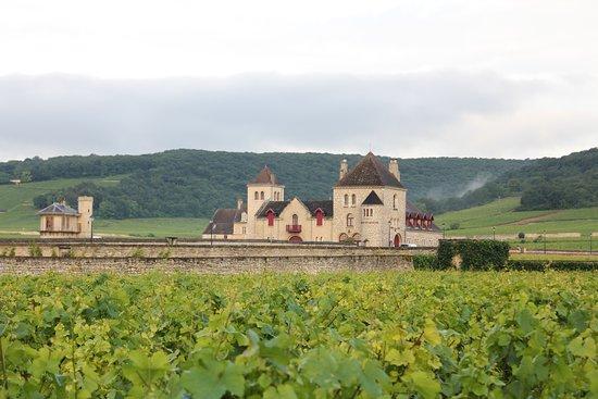 Vougeot, France: Vineyard amidst nearby castle Clos de Vougeo