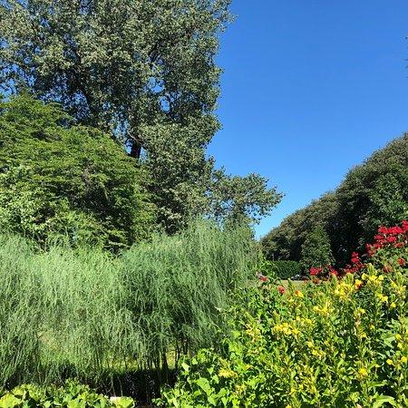 Фотография Botanical Gardens (Botanisk Hage og Museum)