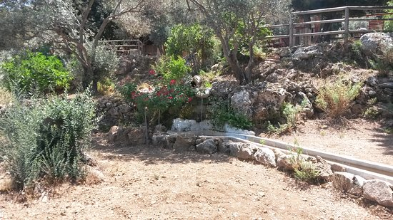 Zia, Görögország: Parco naturale di Kos_16