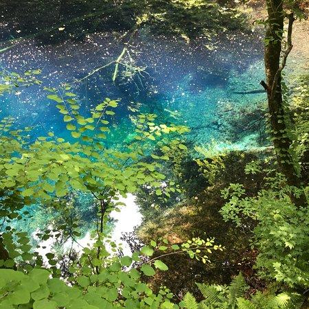 Blue Pond: photo0.jpg