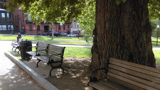 Beacon Hill: הפארק
