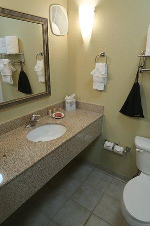 Best Western Plus Henderson Hotel: Room 215 bathroom
