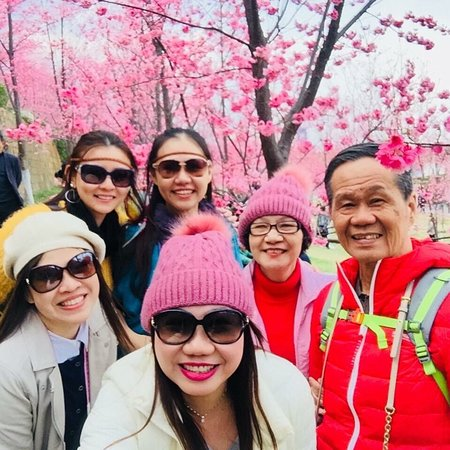 Lovely Family Trip at Dali China 🇨🇳 (Dali University Park)