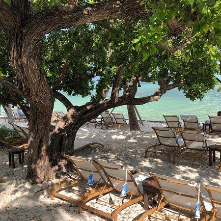 Foto de Playa Largo Resort & Spa, Autograph Collection