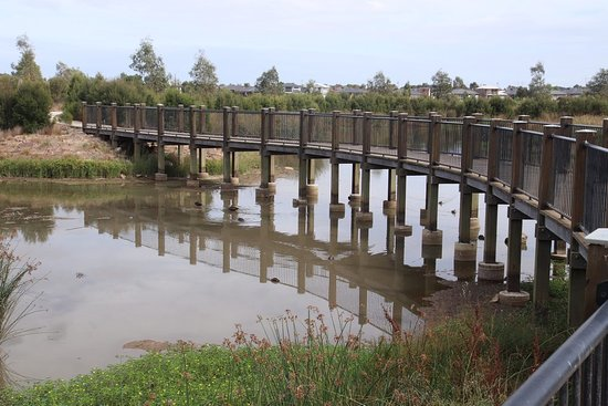 Cascade on Clyde Wetlands: I love that bridge!