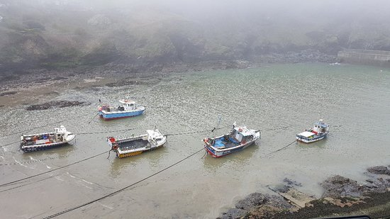 Harbour, Port Isaac, Cornwall: 20180420_130539_large.jpg