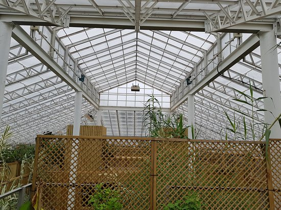 Woodside Wildlife Park: If you had wondered where Joseph Banks conservatory had gone
