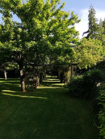 Landivy, France: Jardin