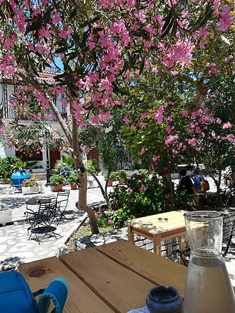 Pergamonto Bar Restaurant: Lovely outside location