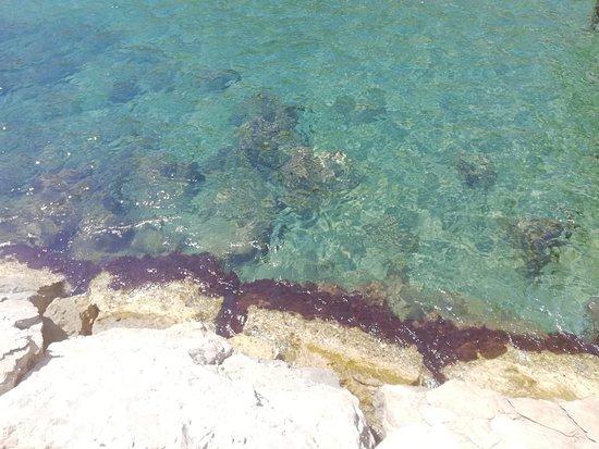 Img wa large g foto di bagno sirena napoli