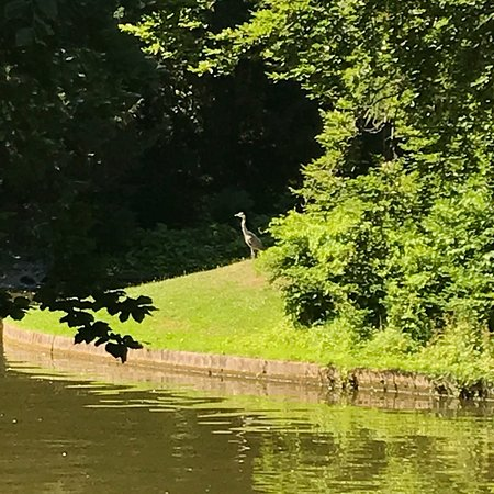 Frederiksberg Have Photo