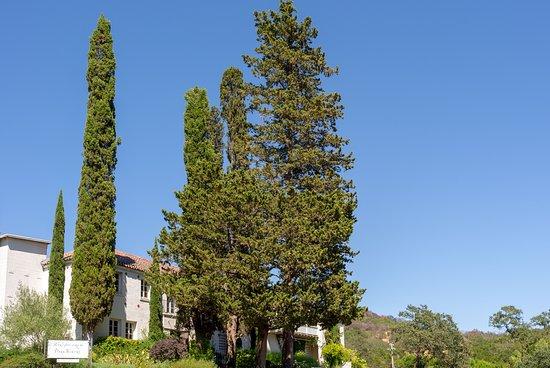 Bartholomew Estate Vineyards and Winery