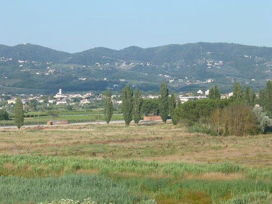 Larciano, Olaszország: view of the marsh