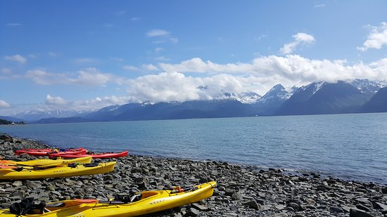 Seward Kayak Tour on Resurrection Bay: View from the beach after our morning paddle