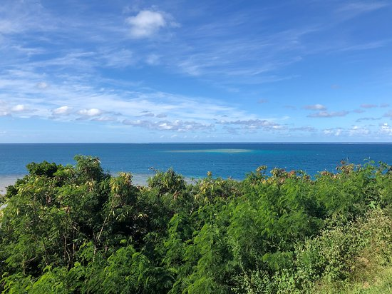 Oneta Resort: From Turtle Lair