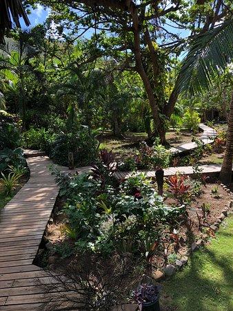 Oneta Resort: Walk ways