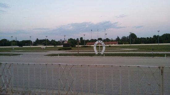 Le Staffe: La pista di fronte alla tribuna