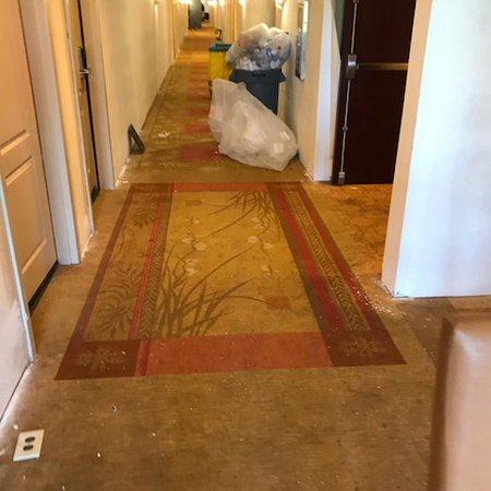 Homewood Suites by Hilton Macon - North: photo1.jpg