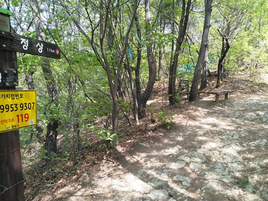 Hiking Paryongsan Mountain: reasonable signage
