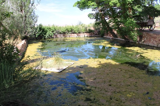 Fredonia, AZ: Retaining pond