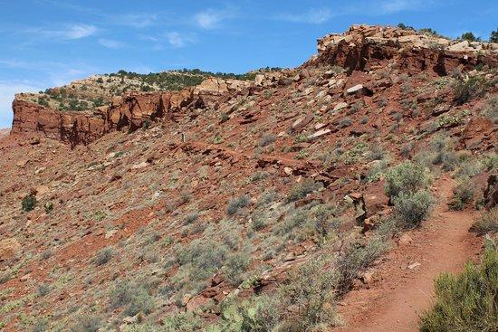 Fredonia, AZ: Ridge Trail