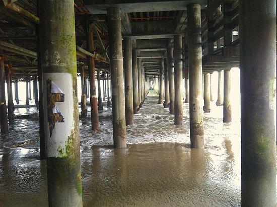 Santa Monica Pier: Pier low tide