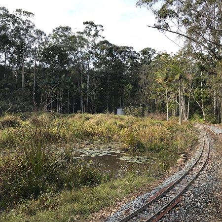 Duranbah, Australia: photo8.jpg