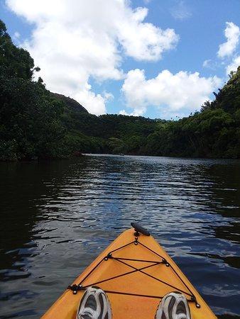 Alii Kayaks: Kayak