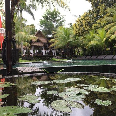 Bilde fra The Mansion Bali