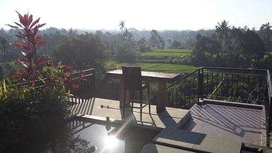 Puri Padma Hotel and Spa: peaceful roof garden