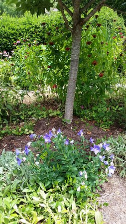 The Lily Barn Garden Townsend 2019 All You Need To