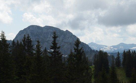 Mount Tegelberg: View from Telgelberg