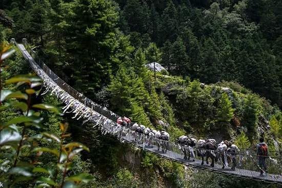 Himalayan Adventure: Pony crossing bridge