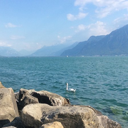 Vevey, Suisse : photo0.jpg